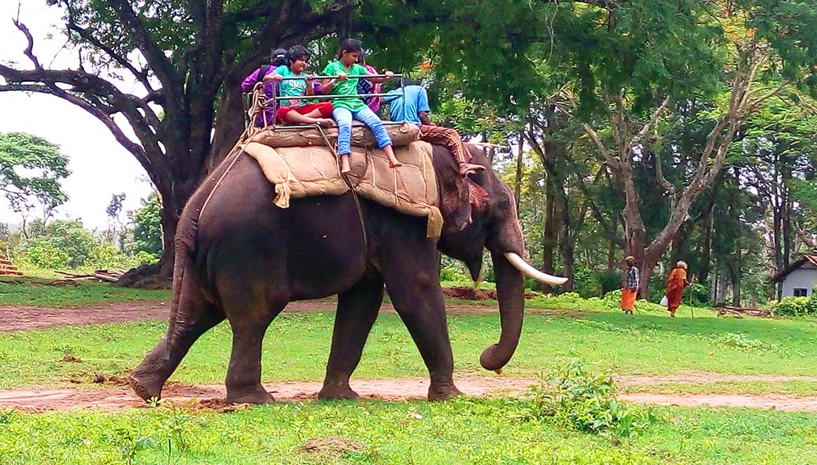 Dubare elephant ride