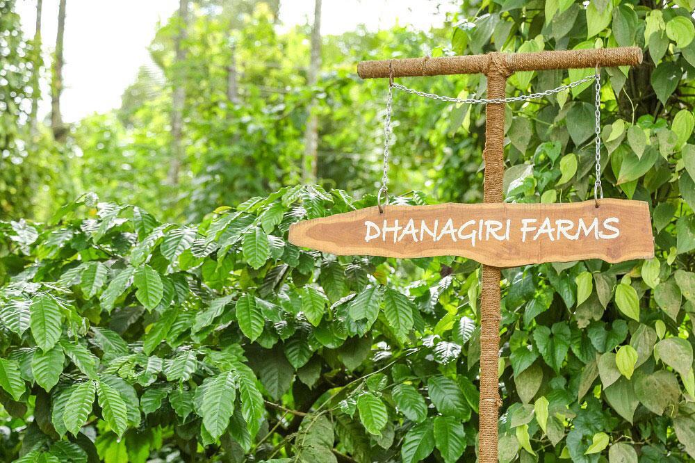 Dhanagiri welcomes you to Wayanad